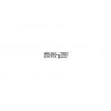 2018 marcatura KONG XS.