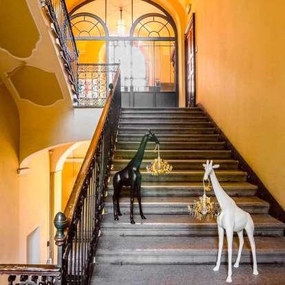 Giraffe in Love XS photo gallery 17