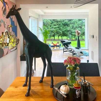 Giraffe in Love XS photo gallery 3