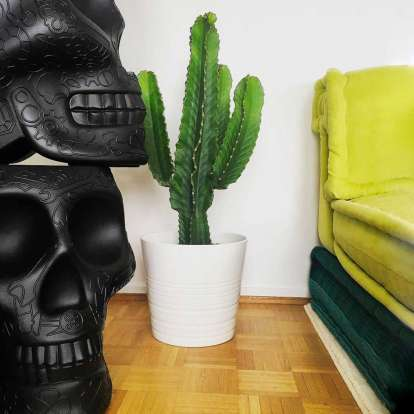 Mexico Planter and Champagne Cooler photo gallery 2