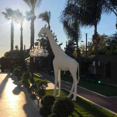 Giraffe in Love Outdoor photo gallery 6