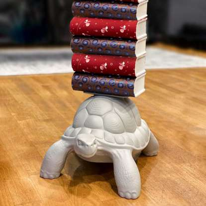 Turtle Carry Bookcase photo gallery 4