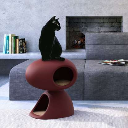 Cat Cave photo gallery 2