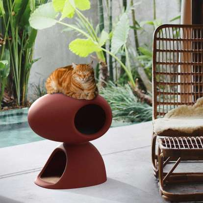 Cat Cave photo gallery 4