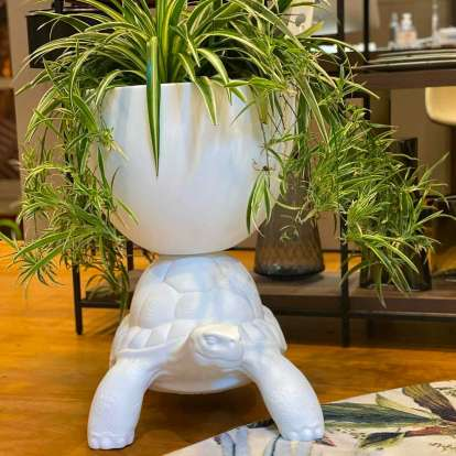 Turtle Carry Planter and Champagne Cooler photo gallery 5