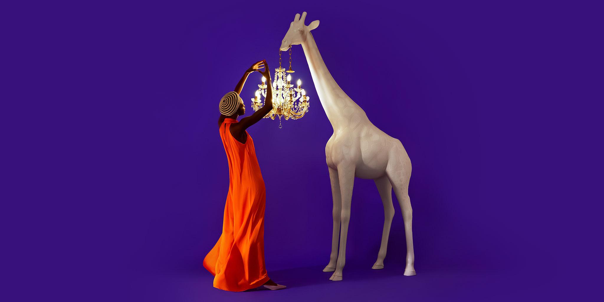 Giraffe in Love collection